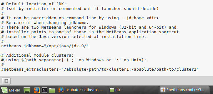 How to install NetBeans 9 for JDK 9 development - Ethical